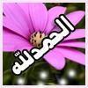 الصورة الرمزية asma batoul